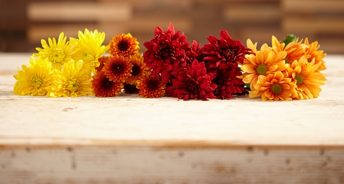 Perfect Fall Flowers